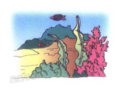 海底简笔画图片大全