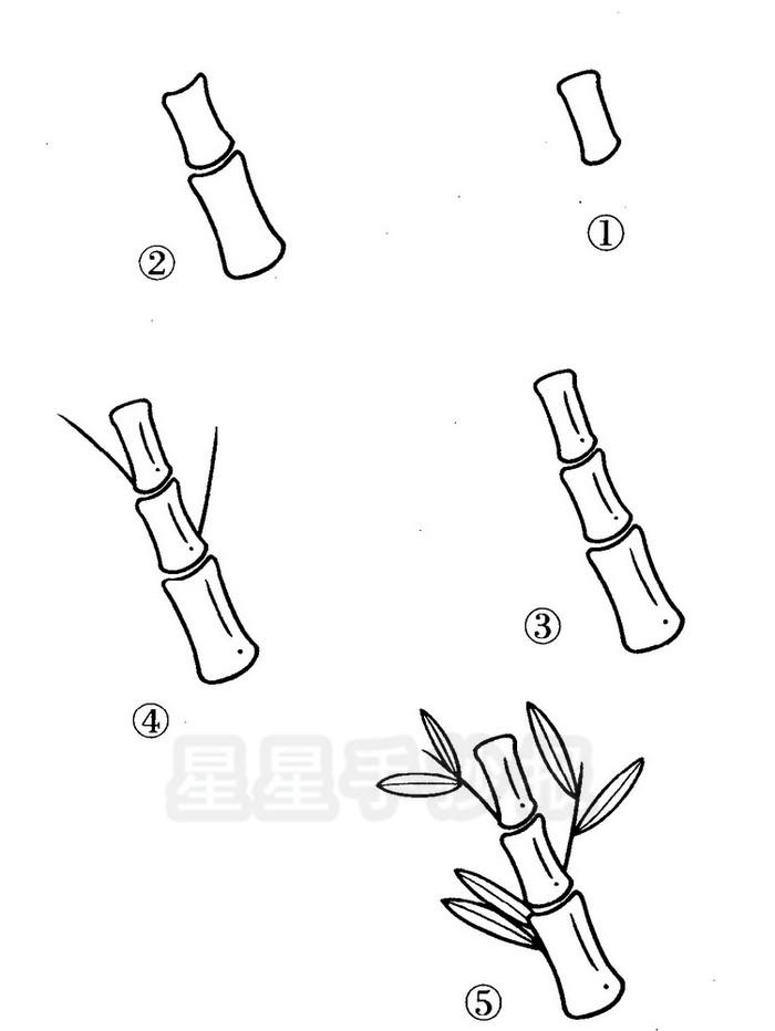 竹子简笔画图片
