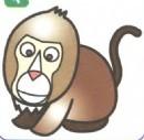 狒狒简笔画