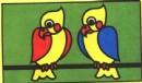 鹦鹉简笔画简单画法