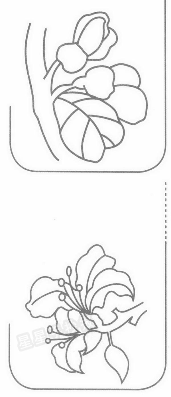 紫荆花简笔画