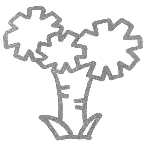 铁树儿歌和简笔画教程