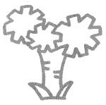 铁树简笔画