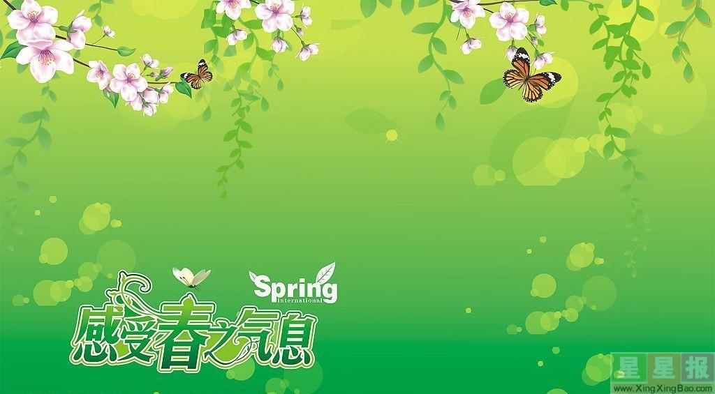 关于春天手抄报模板设计图