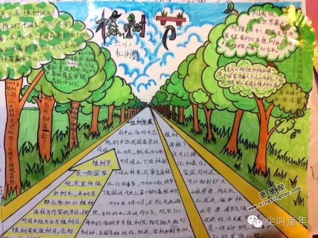 六年级植树节手抄报图片