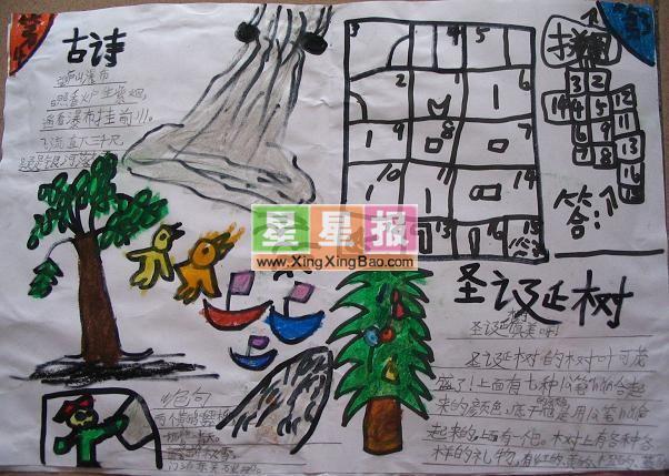 小学圣诞节手抄报:圣诞树插图
