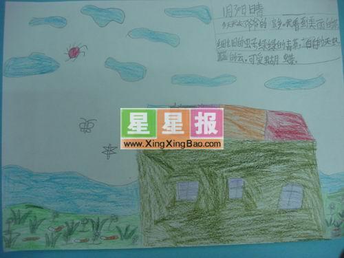 小学生手绘手抄报图片